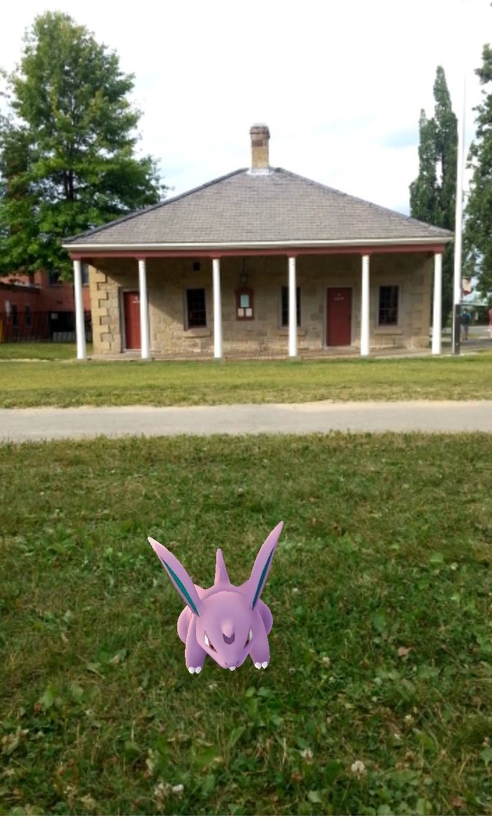 Nidoran at the Guard House