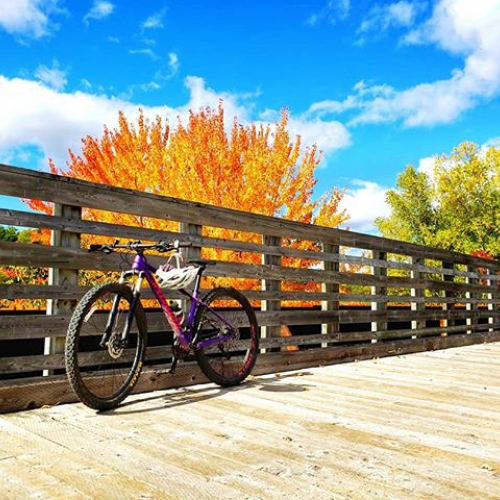 Lovely fairweather afternoon pedal along the river to experience and take in the colors of Autumn.  #explorenb #experiencenb #explorenewbrunswick #fallinnewbrunswick #autmninnewbrunswick #fallcolors #autumn #fall #experienceautumn #fairweatherafternoon #a